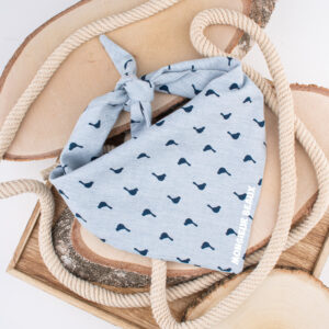 bandana, hond, sjaal, accessoire