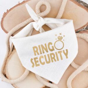 bandana, hond, huwelijk, trouw, outfit, ring security