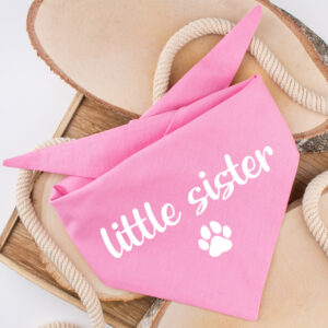 bandana, hond, little sister