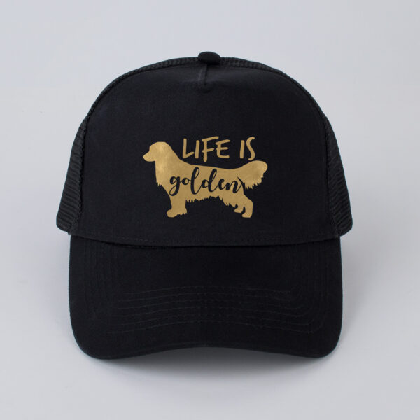 pet, life is golden, golden retriever, zwart, goud