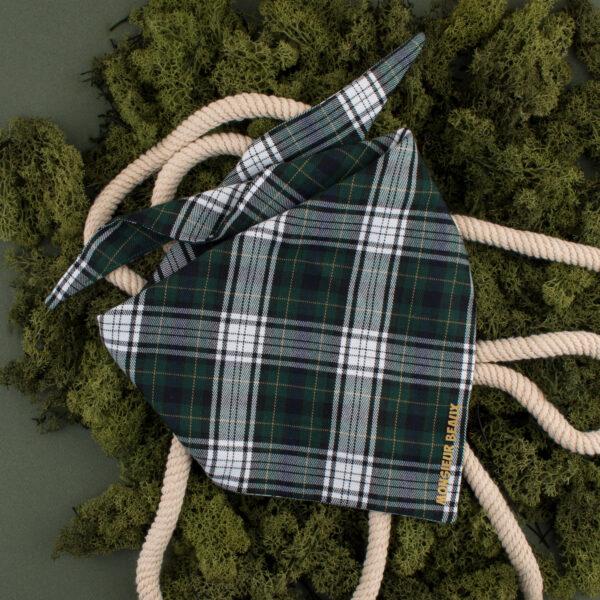 bandana hond, hond bandana ruitjes, hondenbandana, groen, tartan