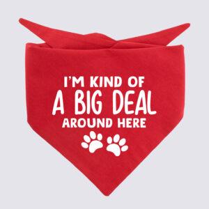 I'm kind of a big deal around here, bandana, hond, grappige bandana